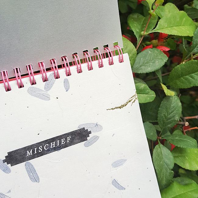 미스치프저널 - 핑크(모눈)15,000원-에코드소울디자인문구, 다이어리/캘린더, 만년형, 일러스트바보사랑미스치프저널 - 핑크(모눈)15,000원-에코드소울디자인문구, 다이어리/캘린더, 만년형, 일러스트바보사랑